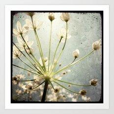 Botanical Explosion Art Print