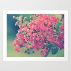 Pink Crape Myrtle Flowers Art Print