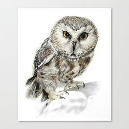 Rescue Owl Canvas Print