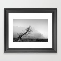 Windy tree. BW Framed Art Print