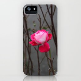 Bi-color rose iPhone Case