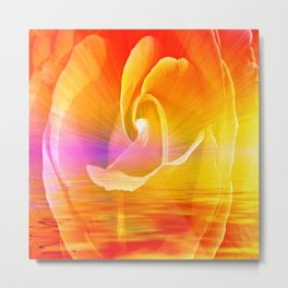Sunset Rose Abstract Metal Print