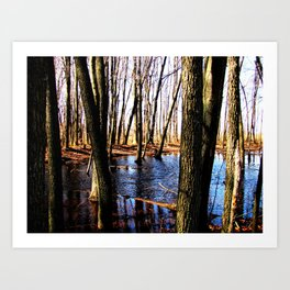 Forest Floor Pond. Art Print