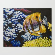 Copperband Butterflyfish Canvas Print