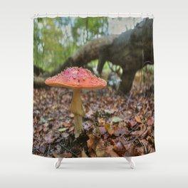 A Faerie's World Shower Curtain