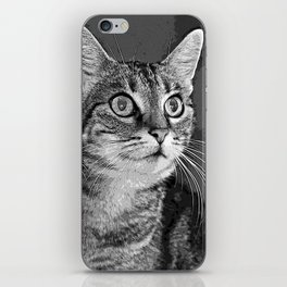 little cat doubled iPhone Skin