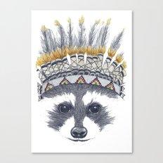 Festivale Raccoon Canvas Print