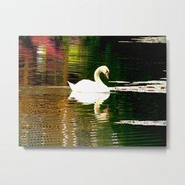 Swan Color Waves Metal Print