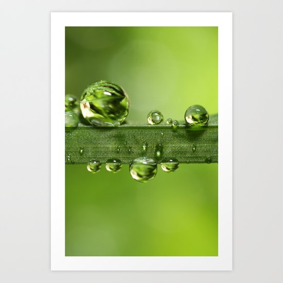 Gloriously Green Art Print