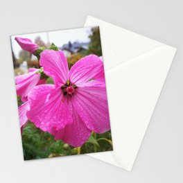 Lavatera flower with water drops in the morning Stationery Cards