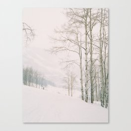 Aspen in snow - Beaver Creek, Colorado Canvas Print