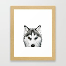 Siberian Husky dog with two eye color Dog illustration original painting print Framed Art Print