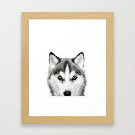 Siberian Husky dog with two eye color Dog illustration original painting print Framed Art Print