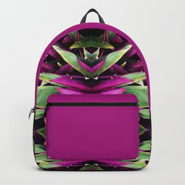 Two Sided Backpack