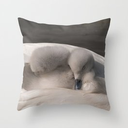 Snuggled Down Throw Pillow