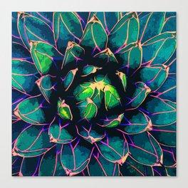 Sweet Agave Canvas Print