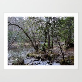 By the Creekside Art Print