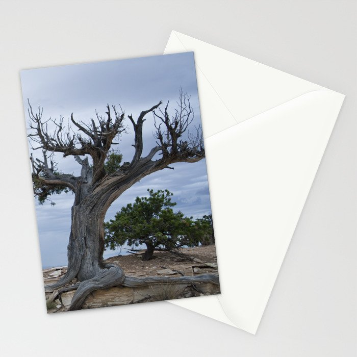 A storm on the horizon Stationery Cards