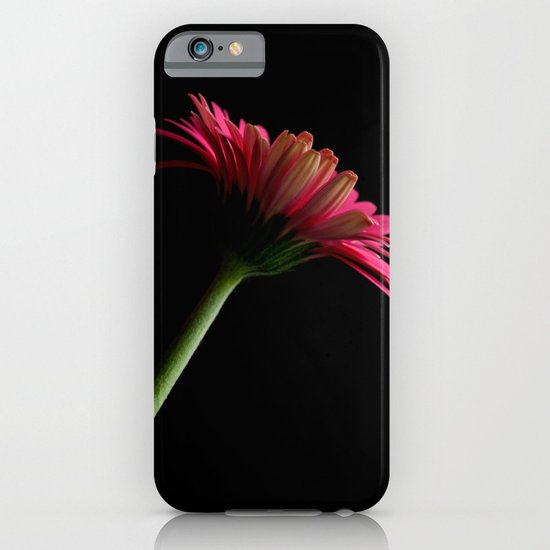 Pink Gerbera 7 iPhone & iPod Case