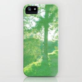Pine Trail Griffith Park Dissolve iPhone Case