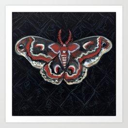 """""""Crecropia Noir"""", IIlustrated Moth Portrait Art Print"""