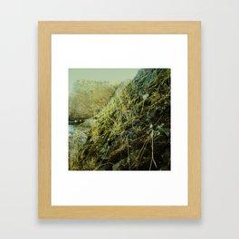 Quiet Demise Series 01 Framed Art Print