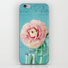 french ranunculus iPhone & iPod Skin