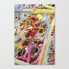 Colors of Salvation Mountain Canvas Print
