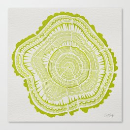 Lime Tree Rings Canvas Print