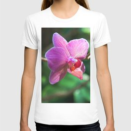 PINK ORCHID SOUND T-shirt