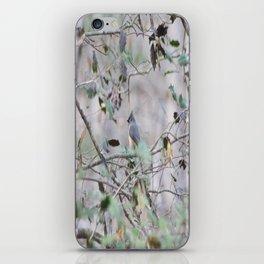 Tufted Titmouse iPhone Skin