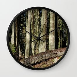THE SUNNY EDGE OF A MOUNTAIN FOREST Wall Clock