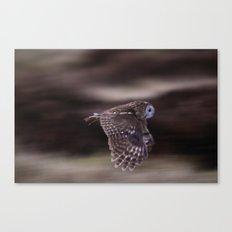 TAWNY OWL FLIGHT Canvas Print