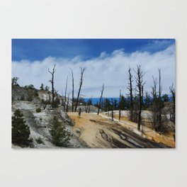 Colourful Mammoth Terraces , Yellowstone  Canvas Print