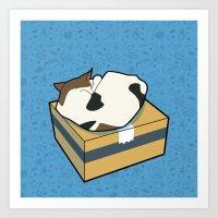 Sleeping Cat part 4 Art Print
