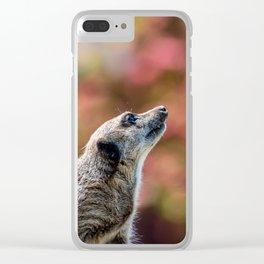 Meerkat. Clear iPhone Case
