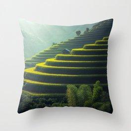 Thailand Rice Plantation Throw Pillow