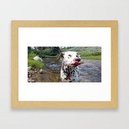 Charlotte Mid-Slurp -- Dalmatian Tongue Framed Art Print