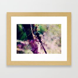 Dragonfly :: Limelight Framed Art Print