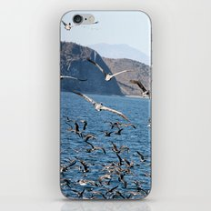 in flight for the fight iPhone & iPod Skin
