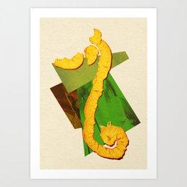 Natural Balance - The Seahorse Art Print