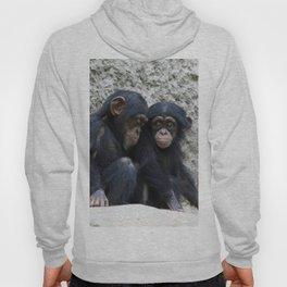 Chimpanzee 002 Hoody
