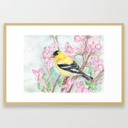 Goldfinch and Dogwood Flowers Framed Art Print