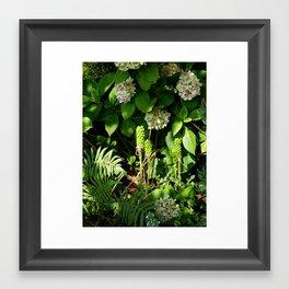 Summer Serenity Framed Art Print