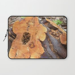 TEXTURES - Manzanita in Drought Conditions #2 Laptop Sleeve