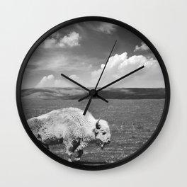 Great White Buffalo Wall Clock