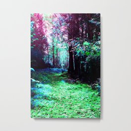 Enter the Forest Metal Print