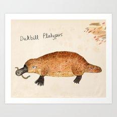 Duckbill Platypus Art Print