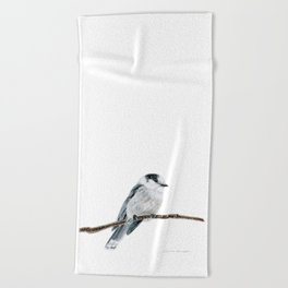 Gray Jay by Teresa Thompson Beach Towel