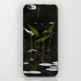 Pickerel Weeds and Lily Pads iPhone Skin